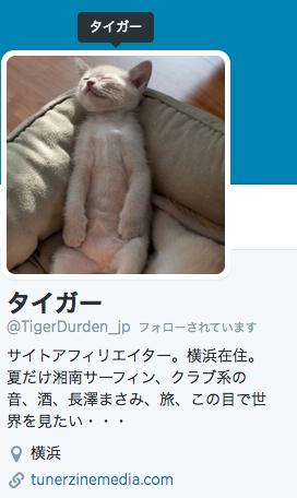 成り上がりアフィリエイター、タイガーさんの名言集【その2】
