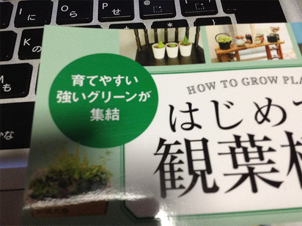 育てやすい強いグリーンが集結